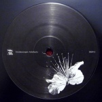 Pfirter* - Kangding Ray - Caos Y Orden Superior, Wars