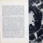 Serie Gramme-Francols- Bernard Mache-10