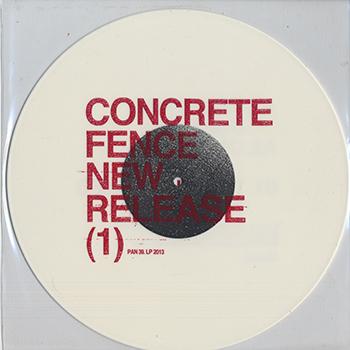Concrete Fence-2013