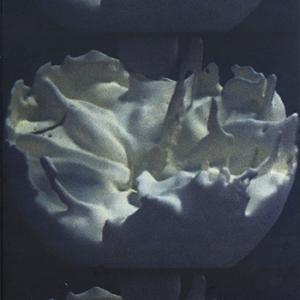 ROSE KALLAL & MARK O PILKINGTON-01