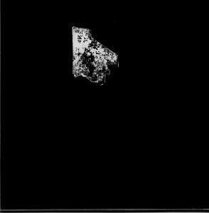 01-grischa-lichtenberger